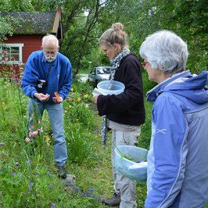 Permakultur-tur til Norge @ Malvik, Norge
