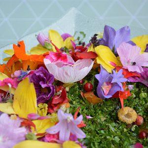 Fantasilater og spiselige blomster @ Naturplanteskolen | Hedehusene | Danmark