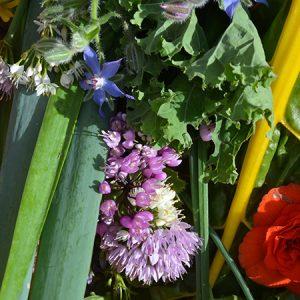 Introduktionskursus - Permakultur for alle @ Naturplanteskolen | Hedehusene | Danmark