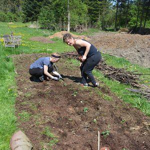 Fremstilling af kompost og anden naturgødning @ Naturplanteskolen | Hedehusene | Danmark