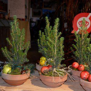 Julemarked (Event) @ Naturplanteskolen | Hedehusene | Danmark