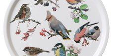 Bakke-havens-fugle-450