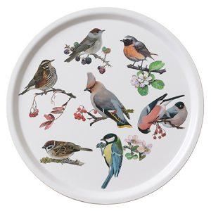 Rund bakke med havens fugle