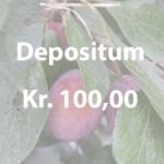 Depositum på Naturplanteskolen