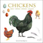 Kort med høns fra Koustrup