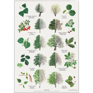 Plakat med træer