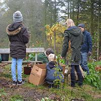 Permakultur i børnehøjde på Naturplanteskolen