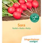 Radise 'Sora' fra Naturplanteskolen
