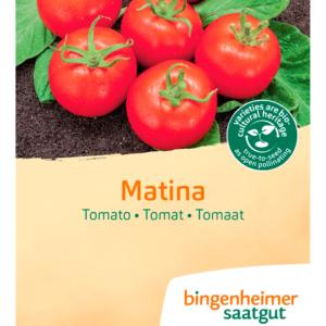 Tomat 'Matina' fra Naturplanteskolen