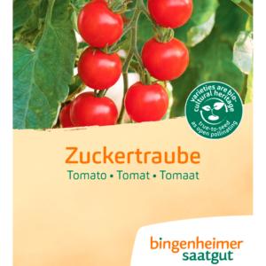 Tomat 'Zuckertraube' fra Naturplanteskolen