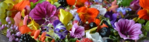 Fantasilat-blomstersalat