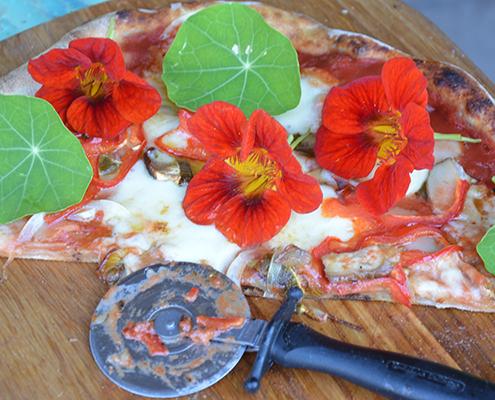 Nybagt pizza på Naturplanteskolen