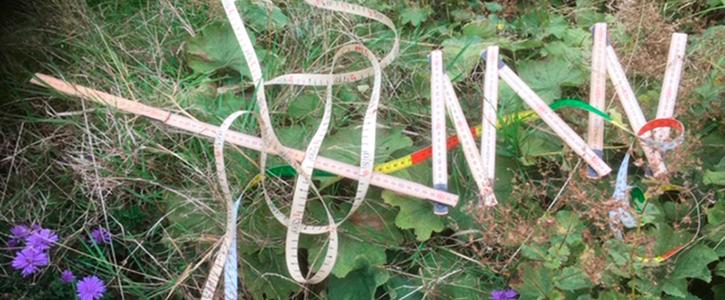 Lær at måle op på Naturplanteskolen
