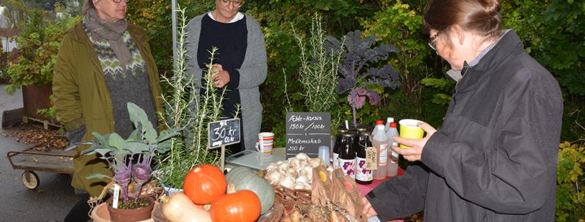 Høstmarked på Naturplanteskolen