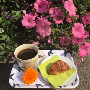 Kaffe og crossaint på Naturplanteskolen