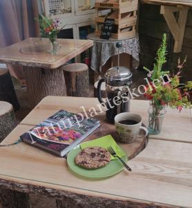 Kaffe og kage på Naturplanteskolen